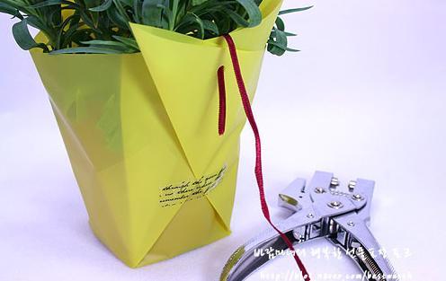 Упаковка горшечного растения своими руками 36