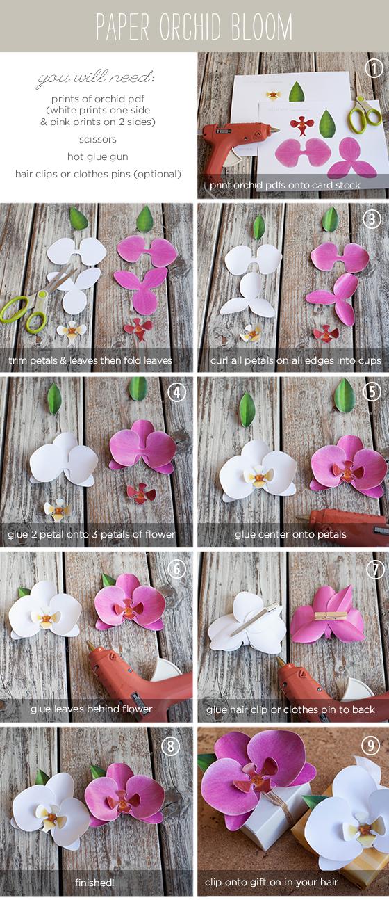 Лепестки цветов для поделок
