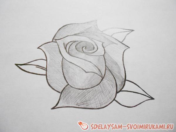 Рисунки карандашом своими руками не сложные но красивые